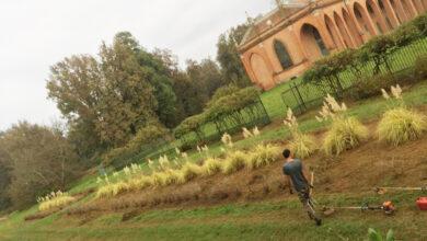 """Photo of Torino, al via i tirocini per """"Giardiniere d'Arte per giardini e parchi storici"""""""